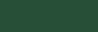 big stretch pine green color swatch